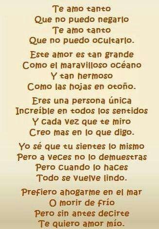 Te Amo Amor Mio 3 Pinterest Love Frases Y Amor