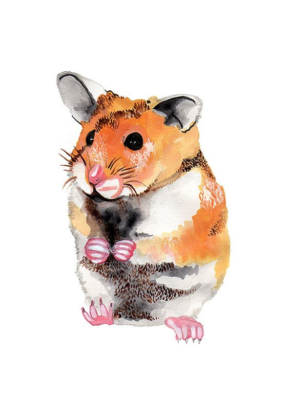 Watercolour hamster gift card by Holliedrawsnature on Etsy