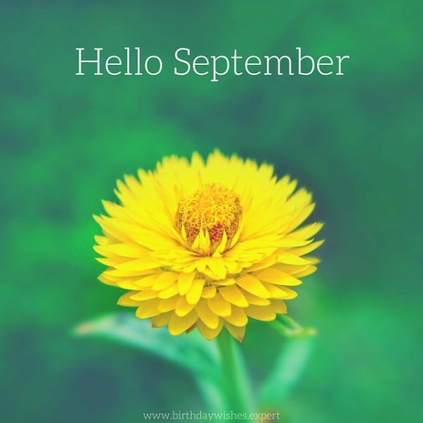 Amazing Hello, September! Hello September QuotesSeptember Quotes AutumnGood ... Great Pictures