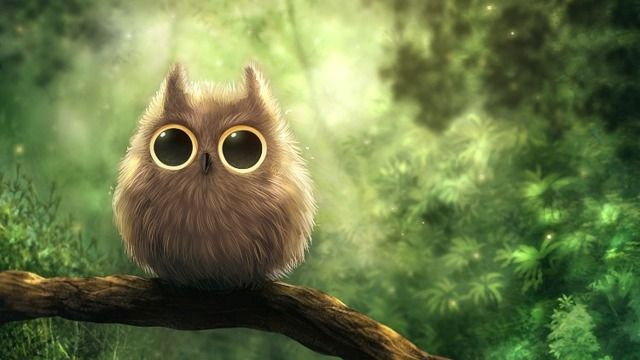 Cute Anime Owls Gallery Hd Wallpaper 640x360 Jpg 640 360 Owl Wallpaper Owl Pictures Cute Owls Wallpaper