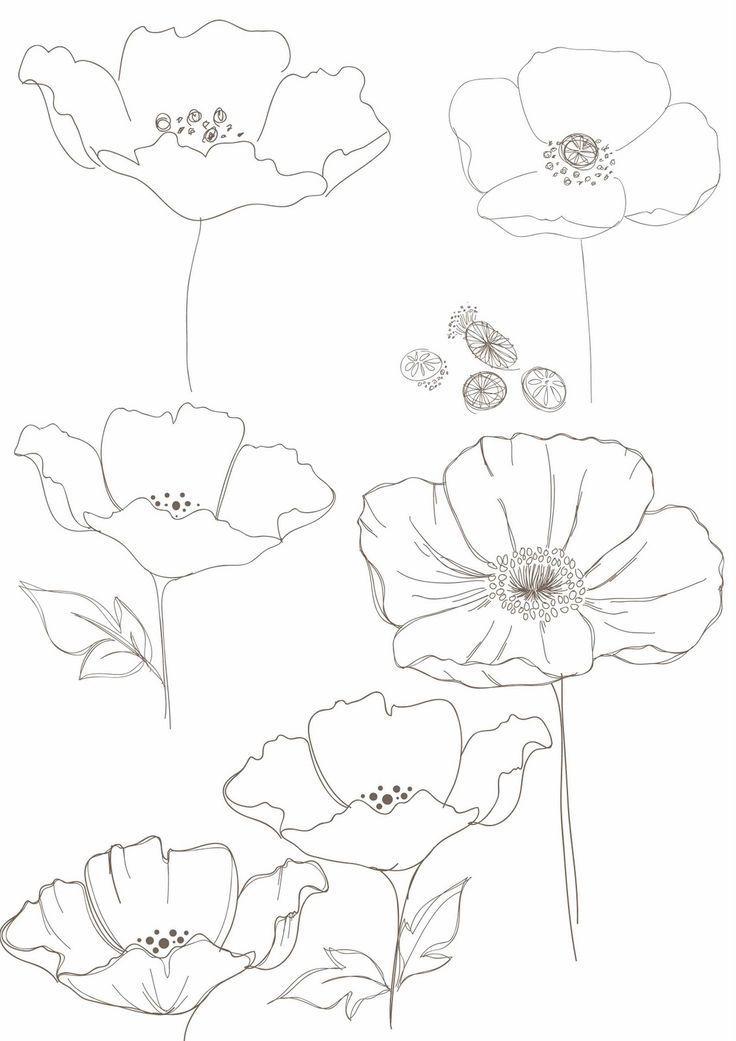 Bobbie Druck Blumenzeichnungen Tattoos In 2020 Blumenzeichnungen Blumen Zeichnung Blumenzeichnung