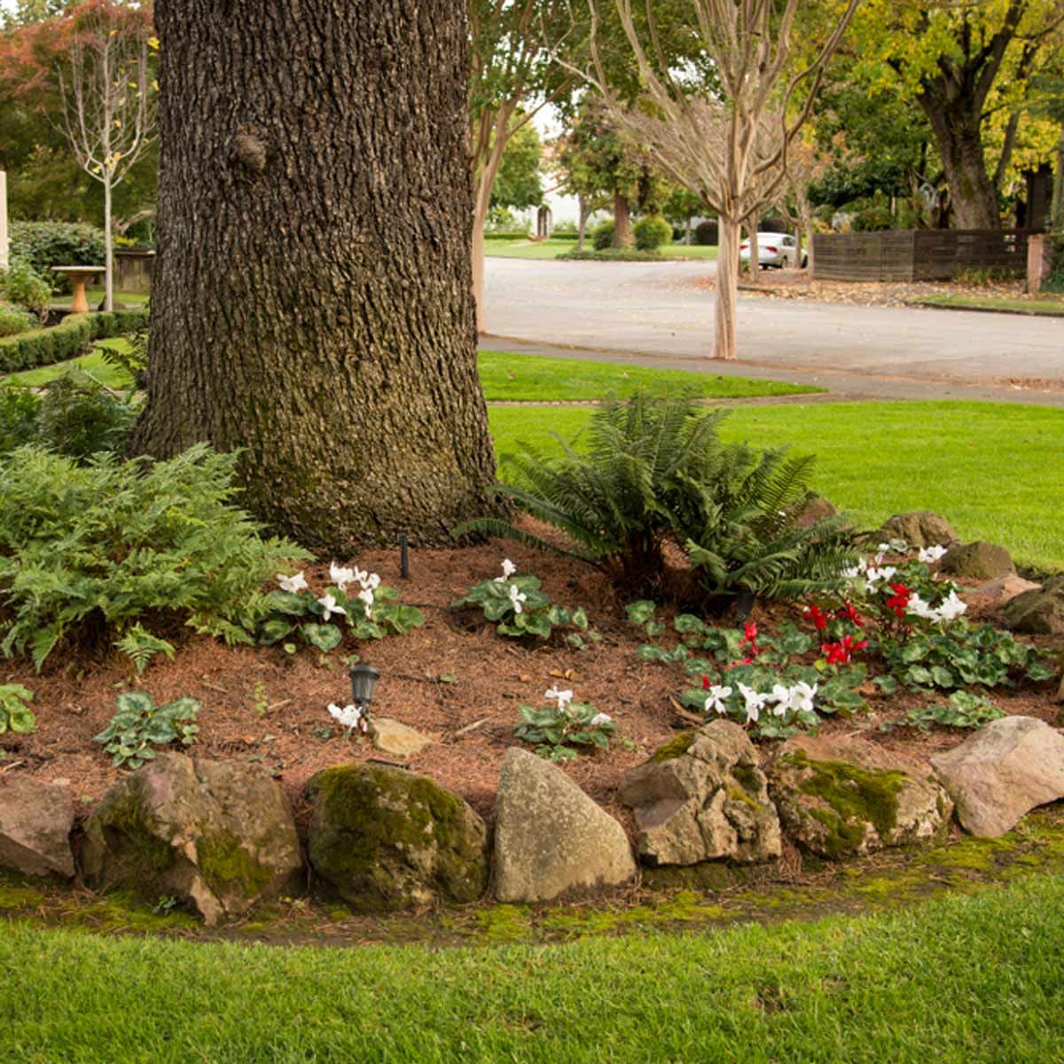 clever tips landscaping