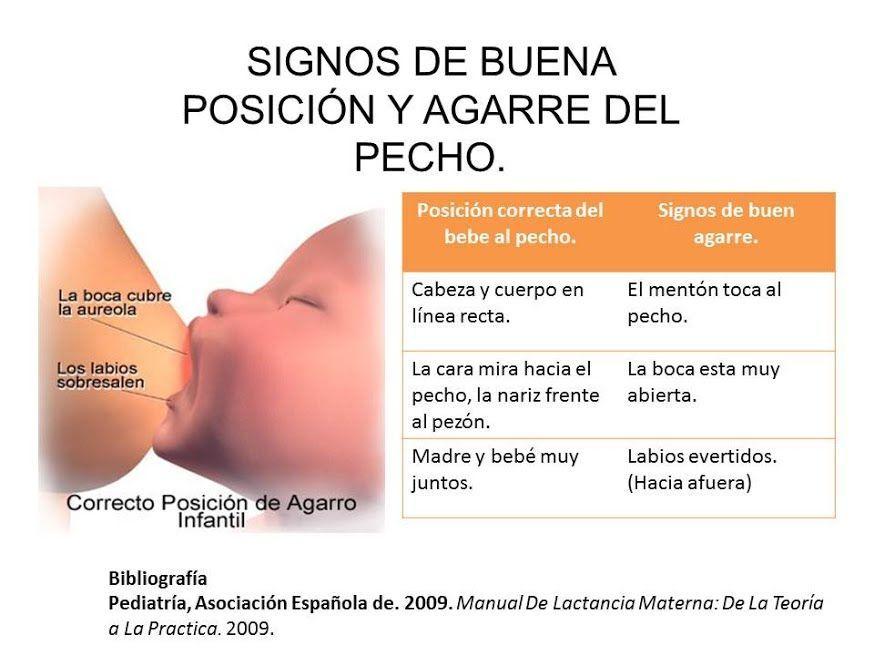 df8c8840e Técnica de amamantamiento #lactancia #alimentacionembarazo Bebes Recien  Nacidos Cuidados, Cuidados Del Recien Nacido