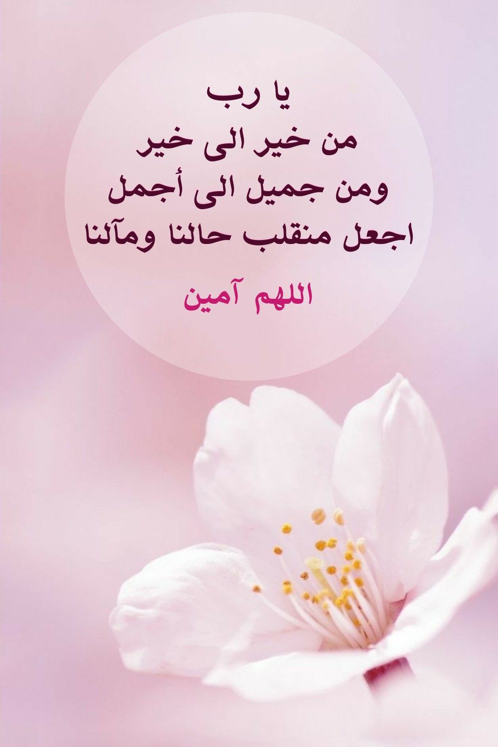 Pin By Sura On حكم أقوال شعر Place Card Holders Place Cards Cards