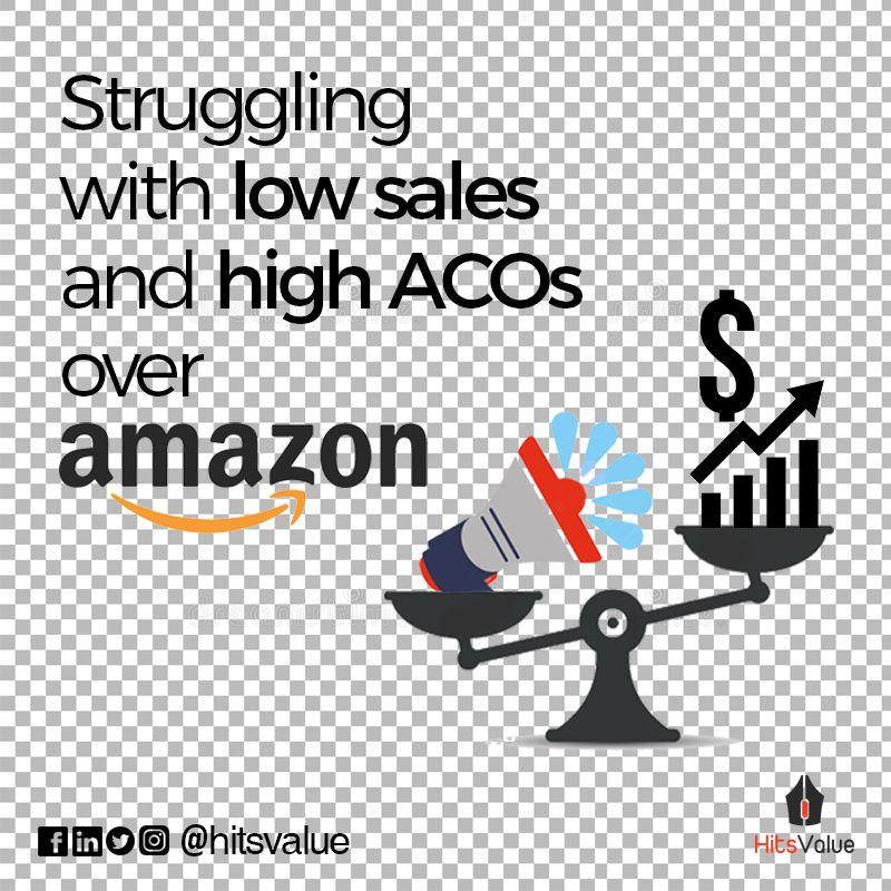 Amazon Certified Marketing Company India SEO, PPC