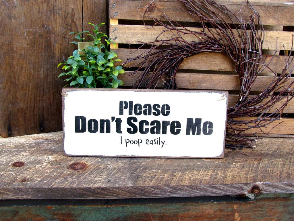 Please Dont Scare Me I Poop Easily Wooden Sign Funny Humorous