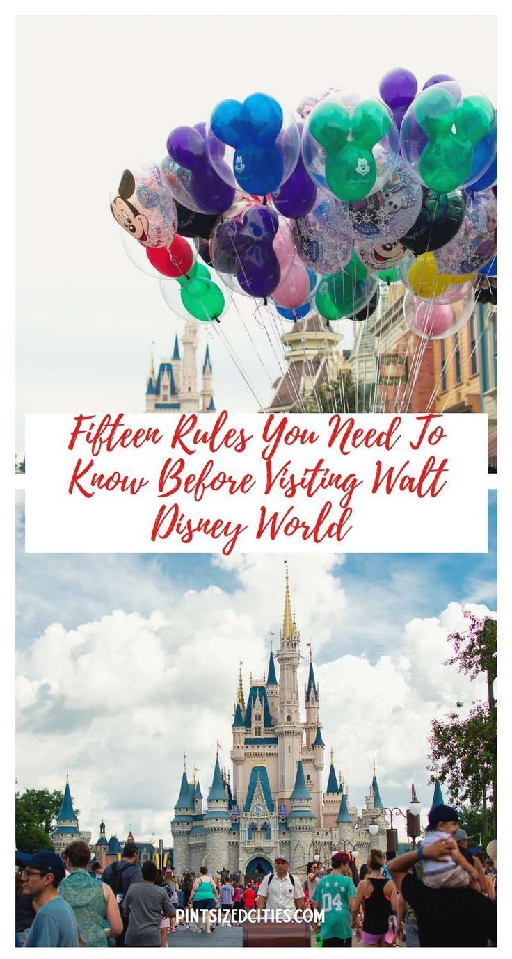 Fifteen rules you need to know before visiting Walt Disney