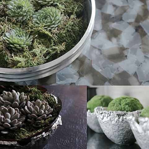 Greenery against metallic silver is a beautifully striking way to display plants in your home xx #beijing #designinspiration