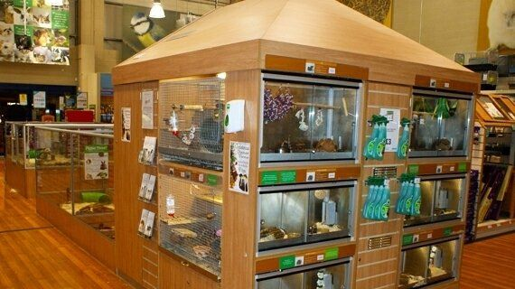 Petition · pets at home needs larger cages and cage enrichment · change org