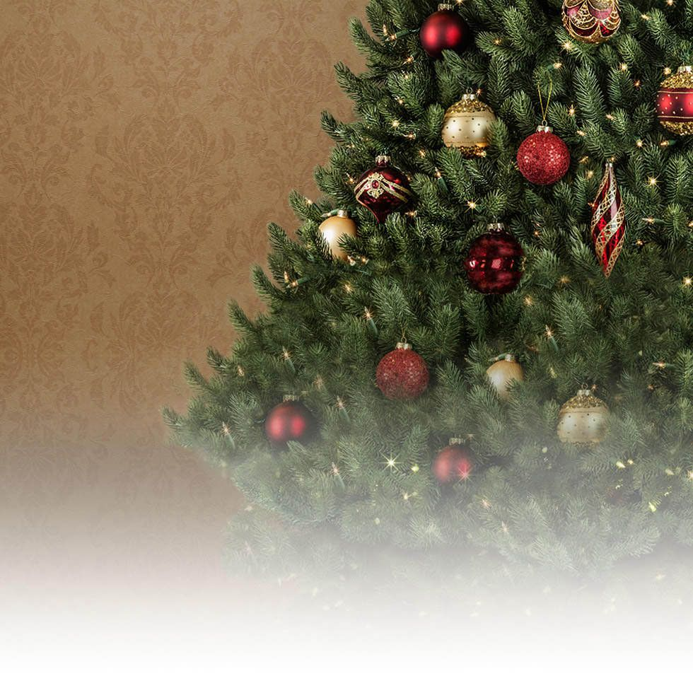 You Know Its Christmas When You See A Tree In The Center Of The Living Roo Best Artificial Christmas Trees Balsam Hill Christmas Tree Artificial Christmas Tree