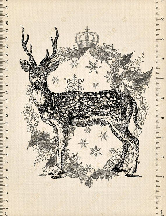 Deer stag. Christmas instant download printable