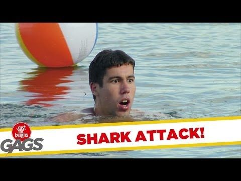 Shark Attack!! - YouTube