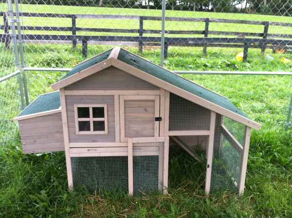 Chicken Coup | Backyard animals, Chicken coup, Keeping ...