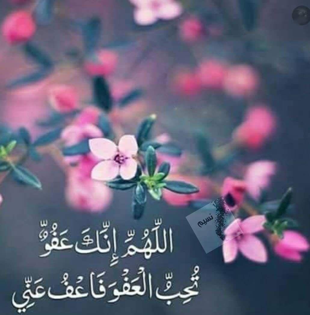 اللهم أنك تعلم سري وعلانيتي فاقبل معذرتي وتعلم حاجتي فاعطني سؤالي وتعلم ما في Islamic Quotes Quran Beautiful Quran Quotes Islam Beliefs