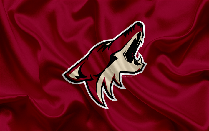Download imagens Arizona E México, hóquei clube, NHL, emblema, logo, Liga Nacional De Hóquei, hóquei, Glendale, Arizona, EUA