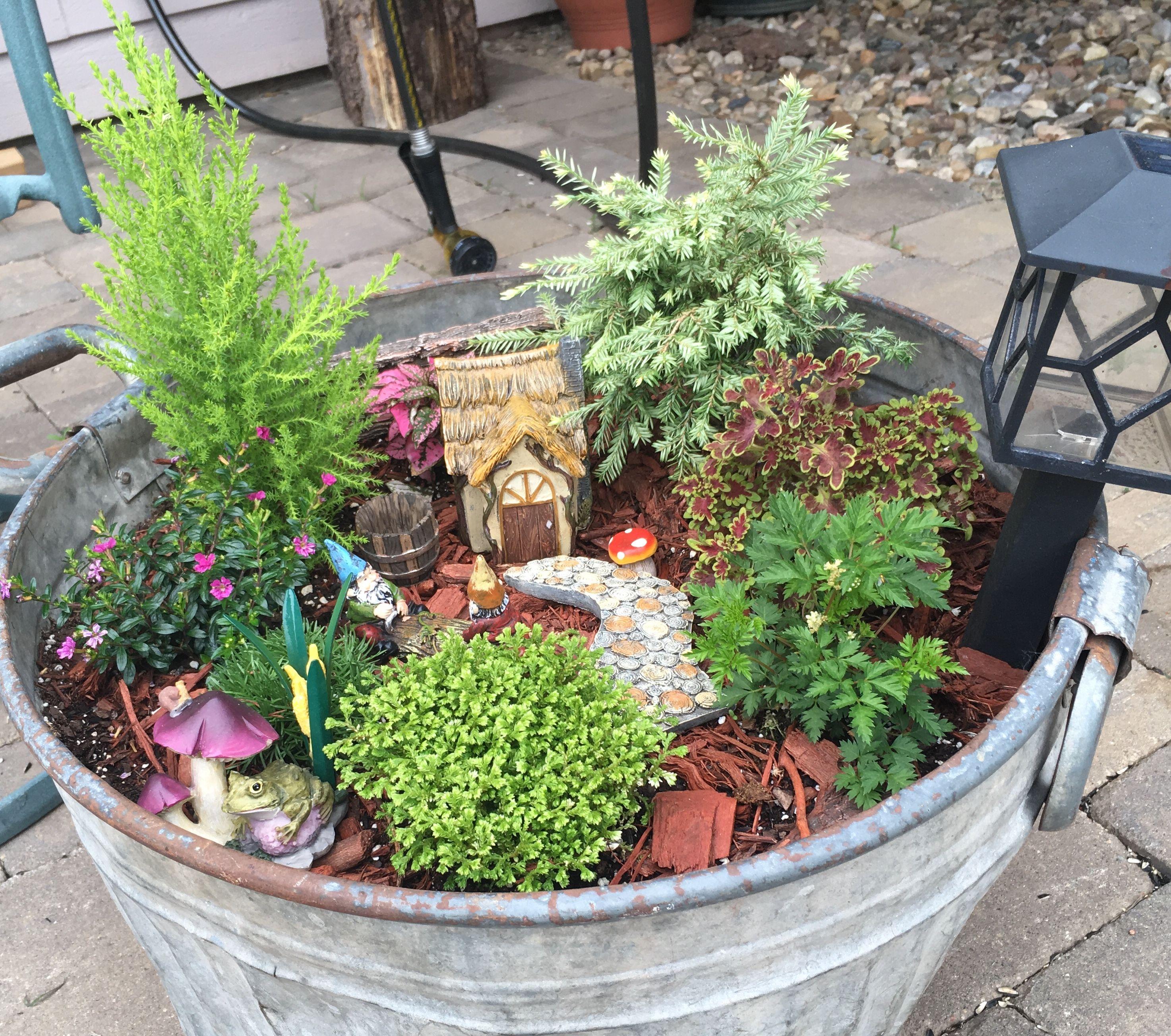 Fairy Garden Ideas Miniature Gardens