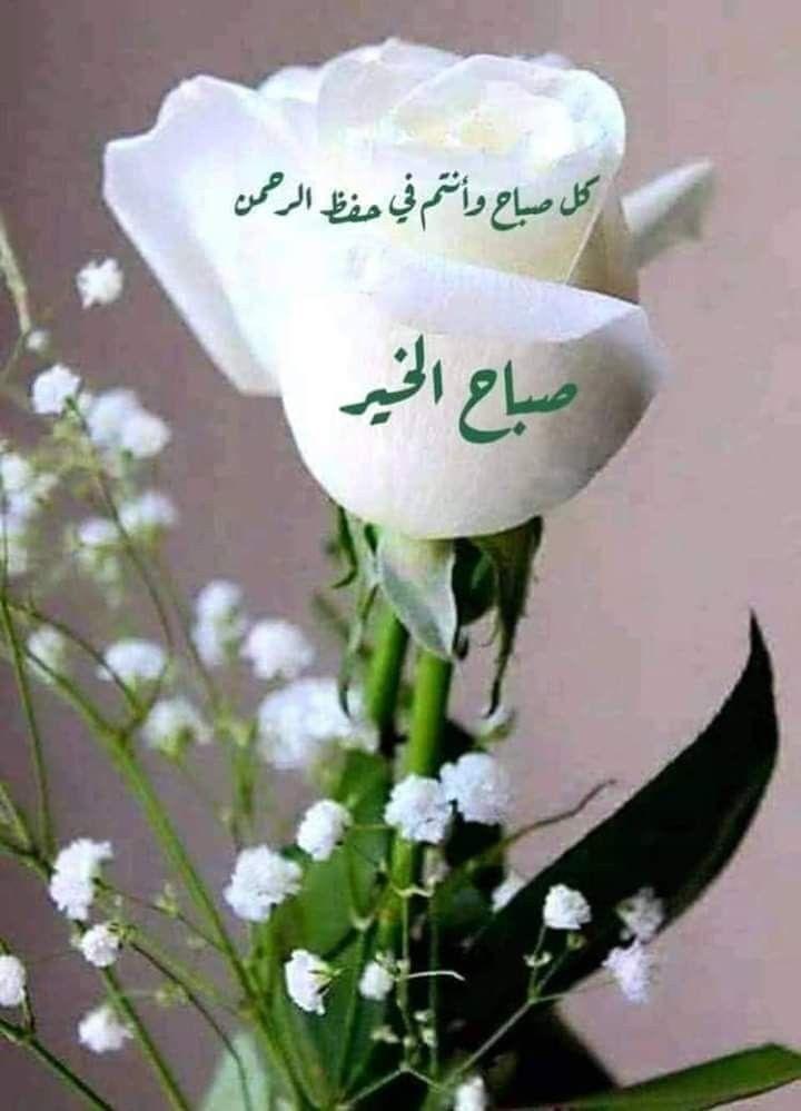 Pin By Waleed Raed On صباح الخير Good Morning Good Morning Image Quotes Good Morning Flowers Good Morning Arabic