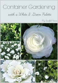 Image result for white and green gardens