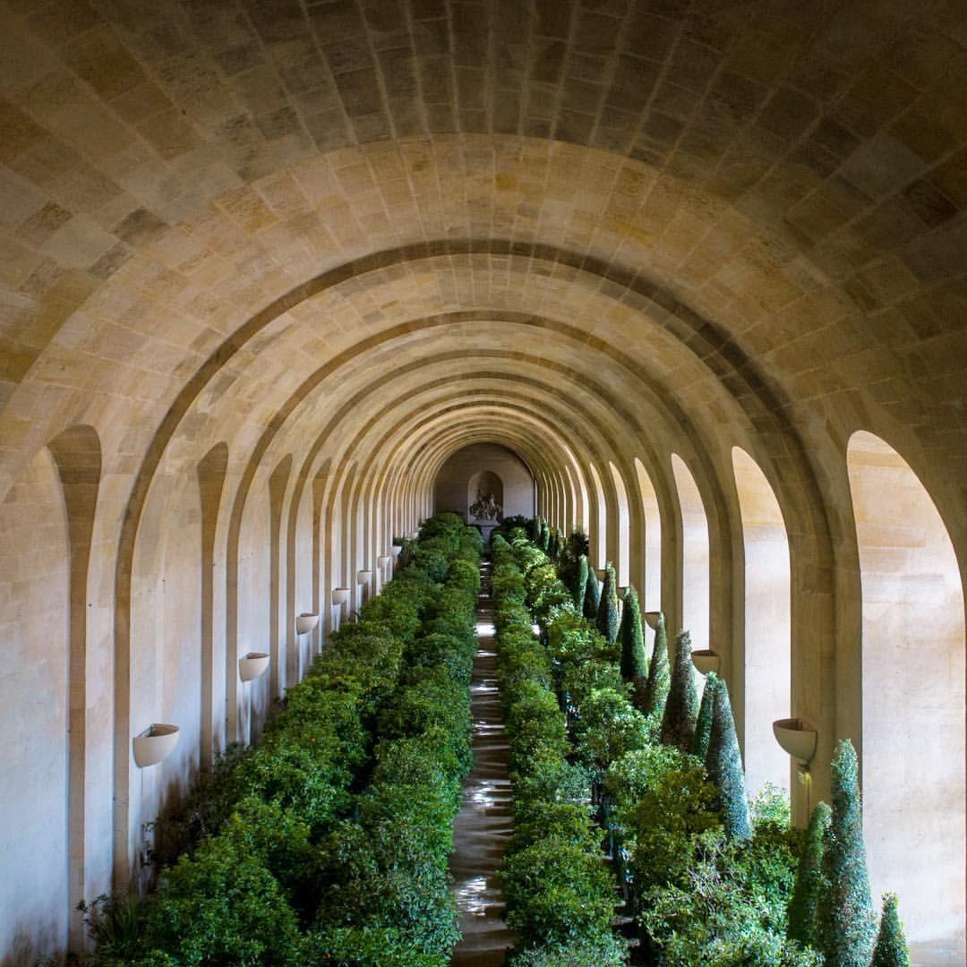 Orangerie du château de Versailles. Forêt intérieure d'un millier ...