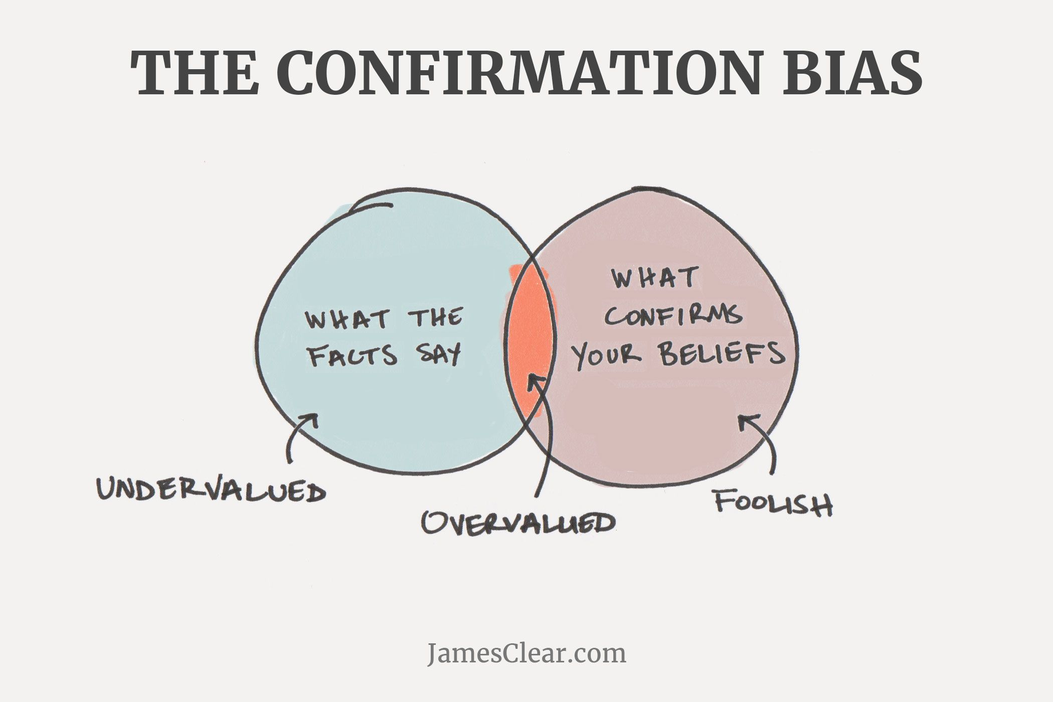 Image result for confirmation bias
