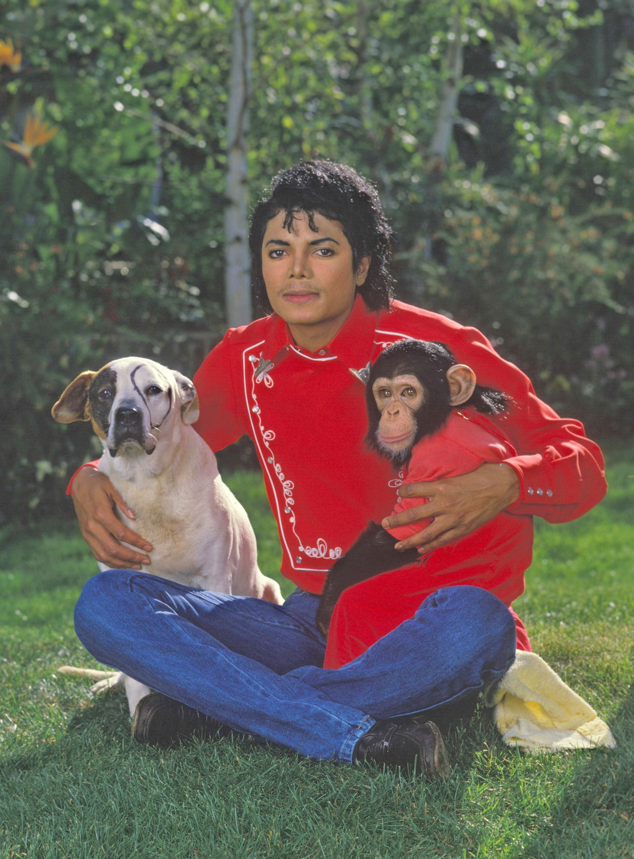 More About Michael Jackson At
