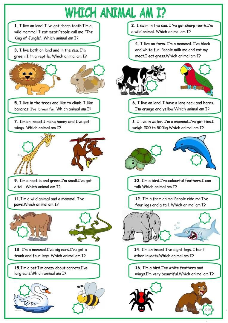 Describing Animals Worksheet Free Esl Printable Worksheets Made By Teachers English Worksheets For Kids English Activities English Lessons [ 1079 x 763 Pixel ]