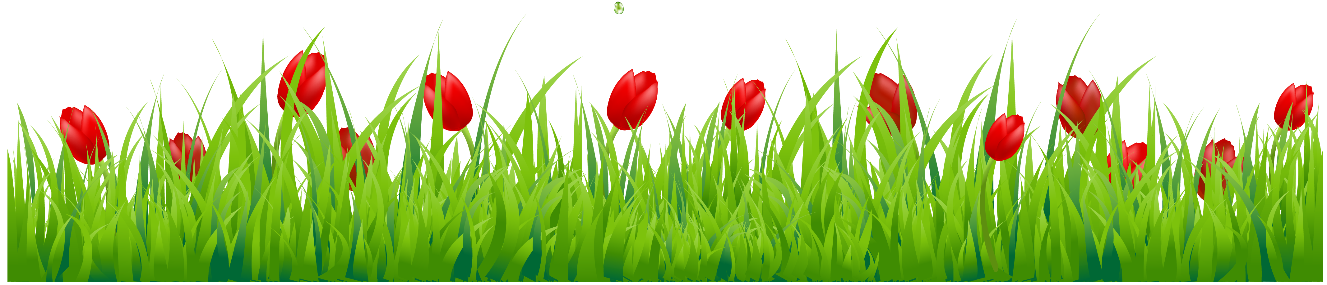 Grass with red tulips png clipart spring borders for Grass flower