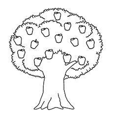 apple tree coloring pages - Apple Tree Coloring Page