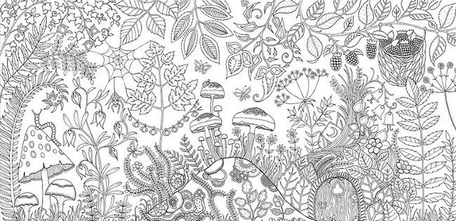Johanna Basford Is A British Illustrator Who Has Sold More Than Million Copies Of Coloring Books For Grown Ups Her First Book Secret Garden Was Major