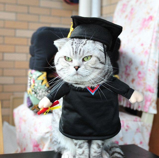 Pet Costume Dog Cat Costume Cat Clothes Sexy Nurse Policeman