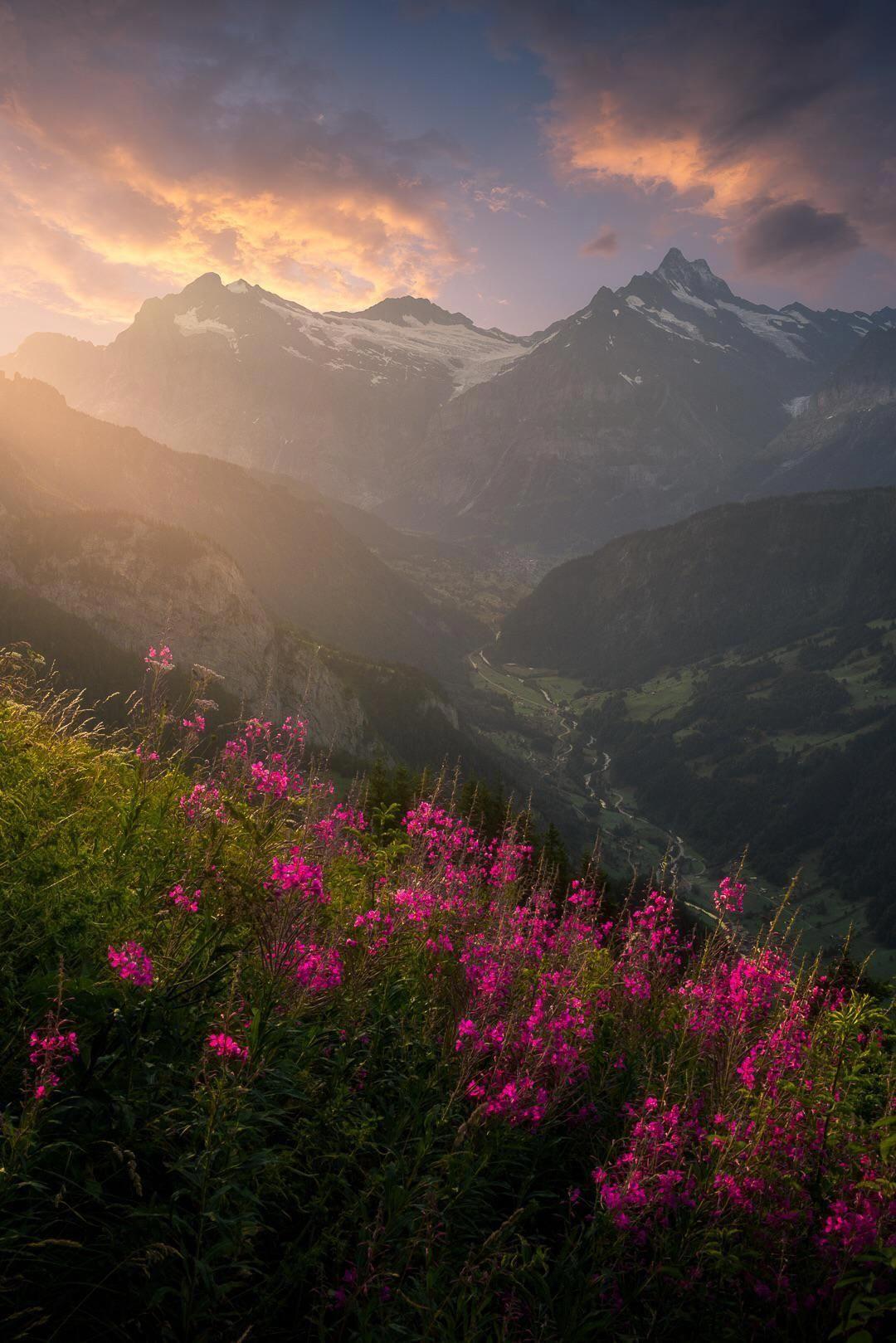 Landscape Photography Colorful Landscapephotographytips Landscape Photography Landscape Nature Photography