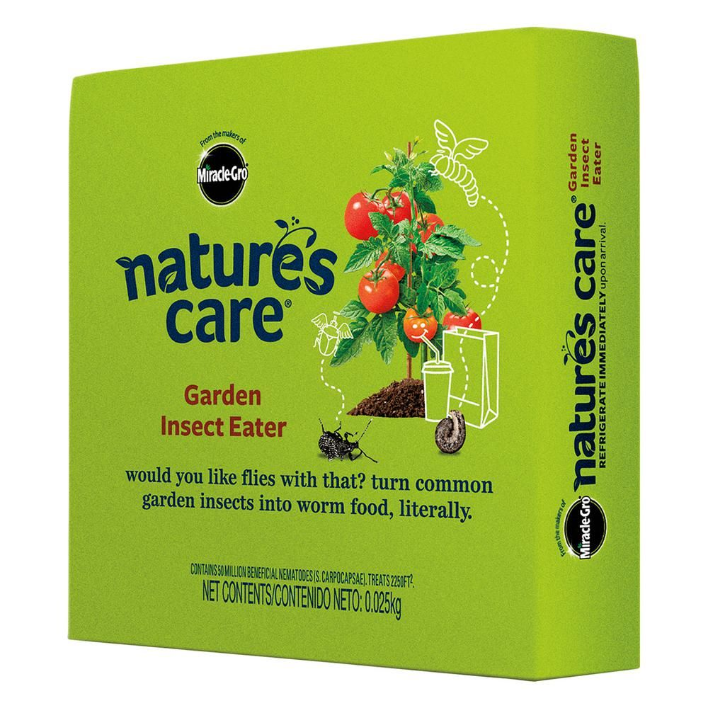 Garden Insect Eater Garden insects, Beneficial insects