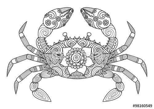 Hand Drawn Zentangle Crab For Coloring Book For Adult Tattoo Temel Sanat Cizim Desenler