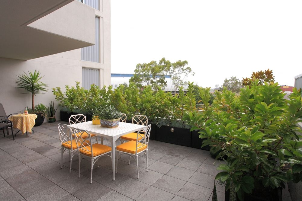 Plants used for privacy on balcony garden (With images ...