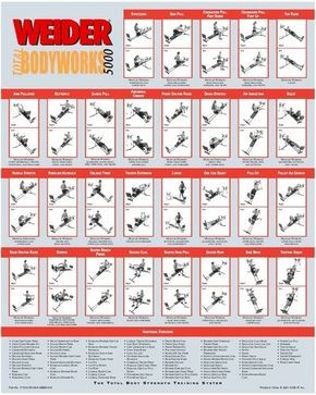 Weider Home Gym Exercise Chart Pdf : weider, exercise, chart, Weider, Total, Bodyworks, Exercise, Chart, Google, Search, Workout, Chart,