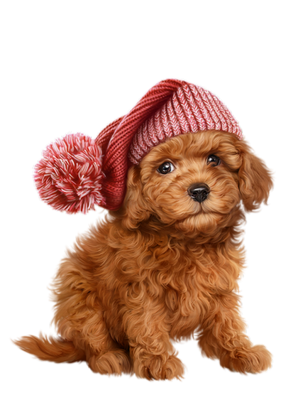 Chien Chiot Dog Cute Animal Clipart Cute Dogs Outdoor Dog Toys