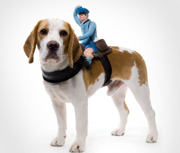 Motorcycle Rider Dog Costume Harness Dog Costumes Funny Big Dog