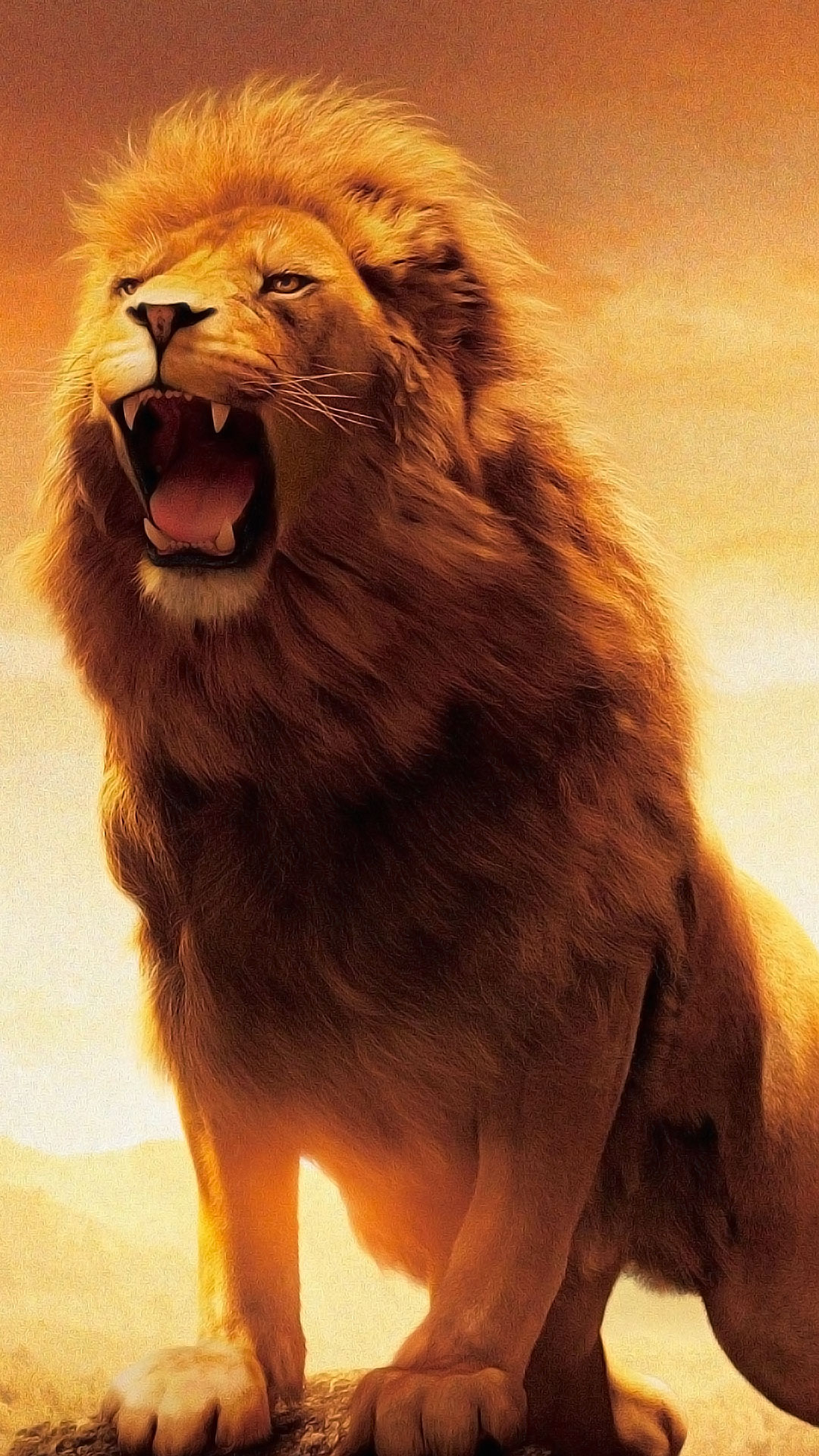 A Lion S Roar 1080x1920 Lion Wallpaper Lion Hd Wallpaper Lion Wallpaper Iphone