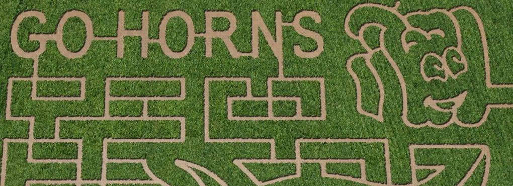 Barton Hills Farms / Bastrop