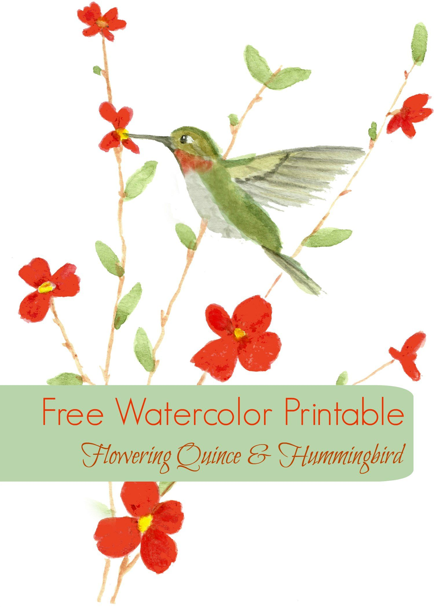 Free Watercolor Printable Card | Watercolor, Free printables and ...