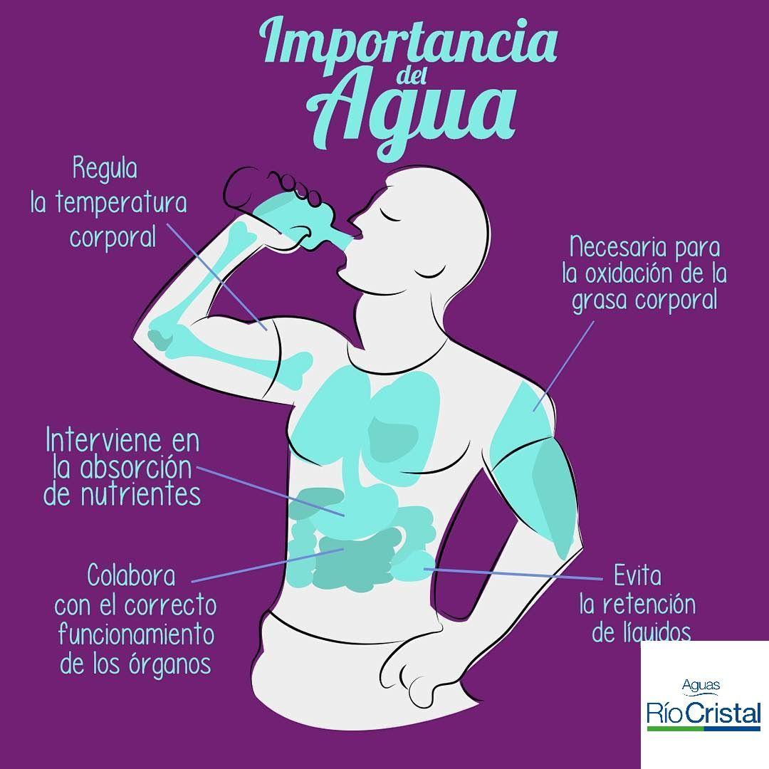 Buenos Días Que Tengan Un Felizjueves Y Recuerden La Importancia De Hidratarse Son M Beneficios De Beber Agua Beneficios De Tomar Agua Promocion De La Salud