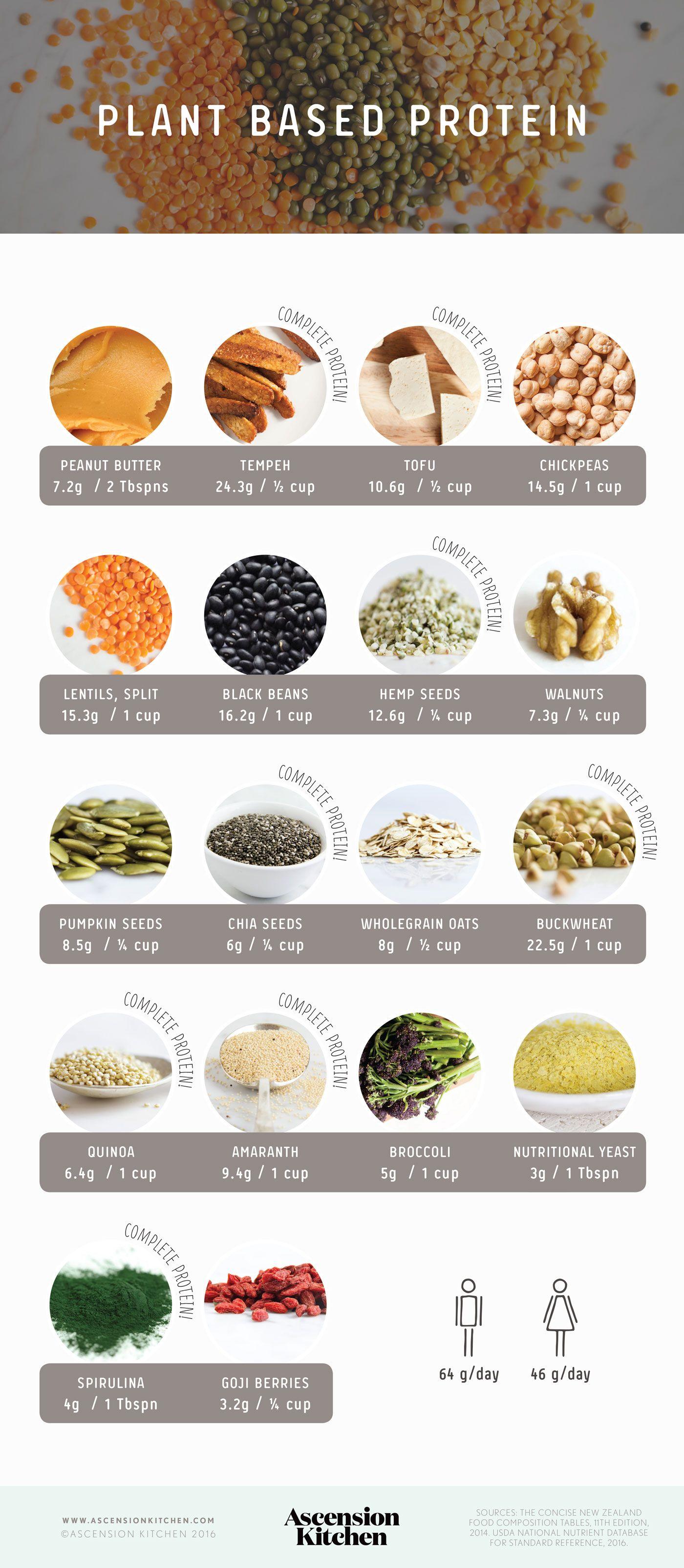 dieta a base de plantas o vegetales
