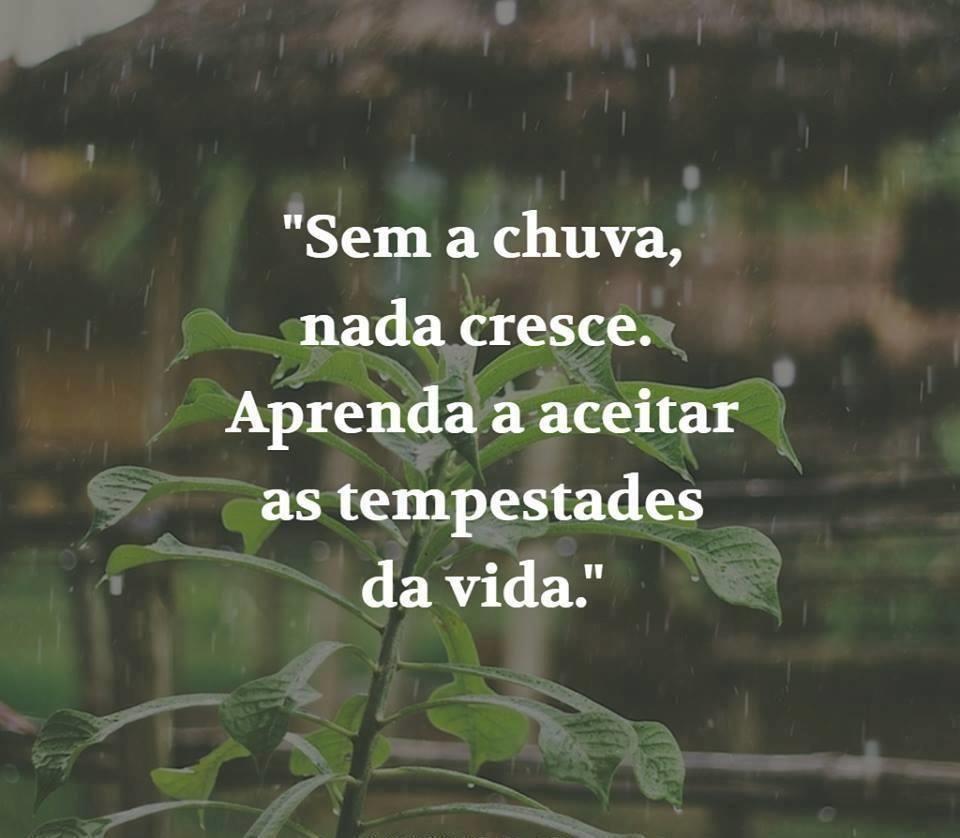Frase De Motivação Chuva E Tempestade Imagens Frases