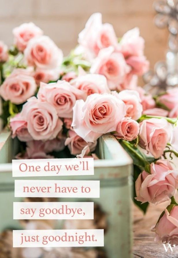 50 inspirational valentines day quotes freshmorningquotes - Inspirational Valentines Day Quotes