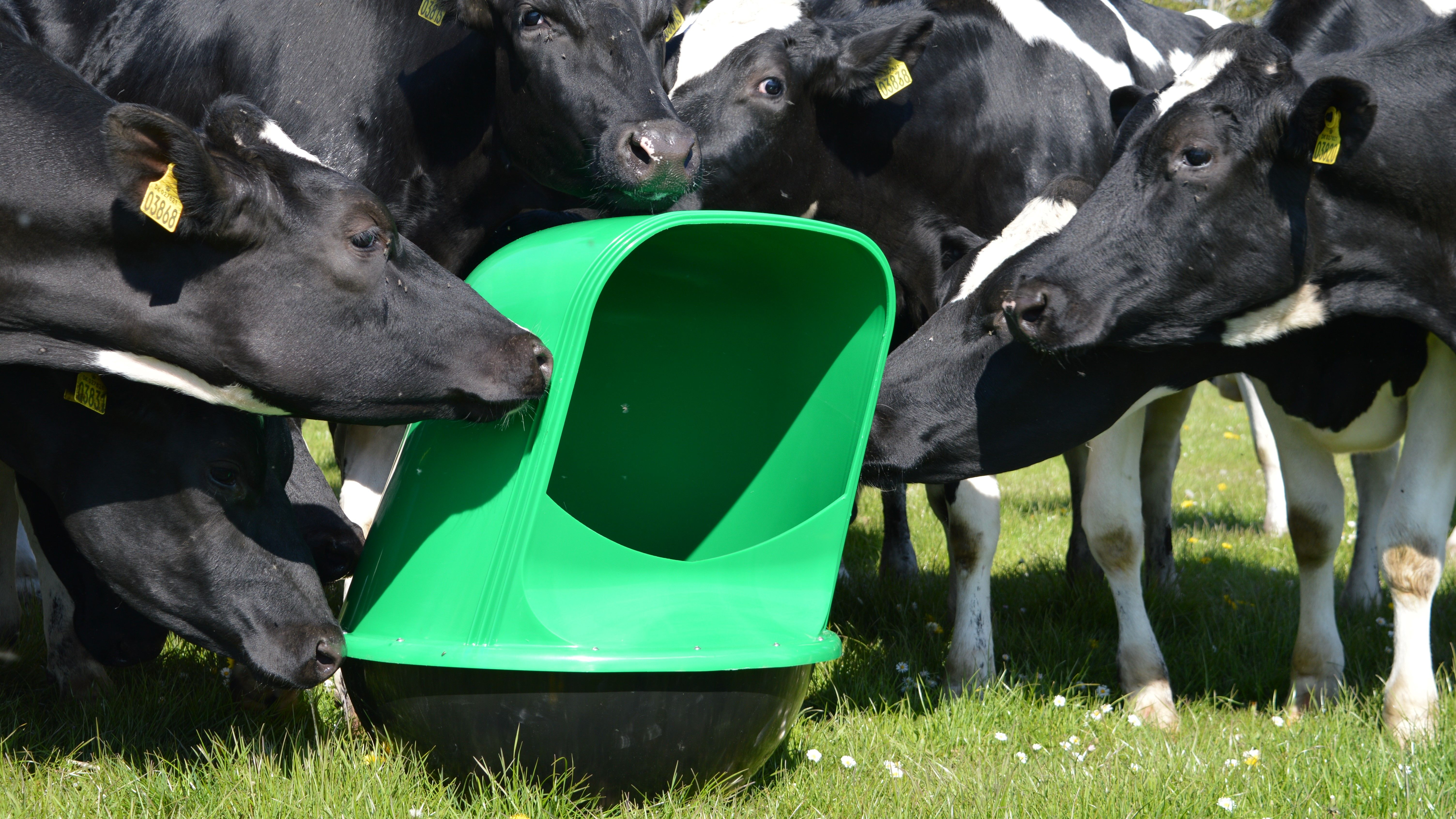 Pin On Microfeeder Products For Grazing Animals