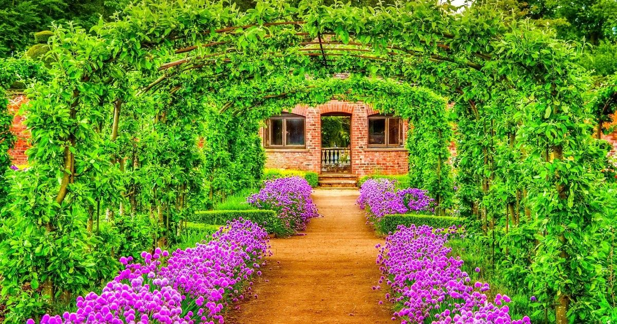13 Nature Garden Wallpaper Download Mobile Wallpaper Flower Garden 1870278 Hd In 2020 Flower Images Wallpapers Wallpaper Nature Flowers Background Images Wallpapers