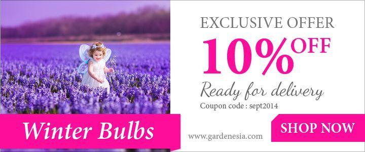 Nice Online Garden Store: Gardenesia: Flowers For The Coming Season