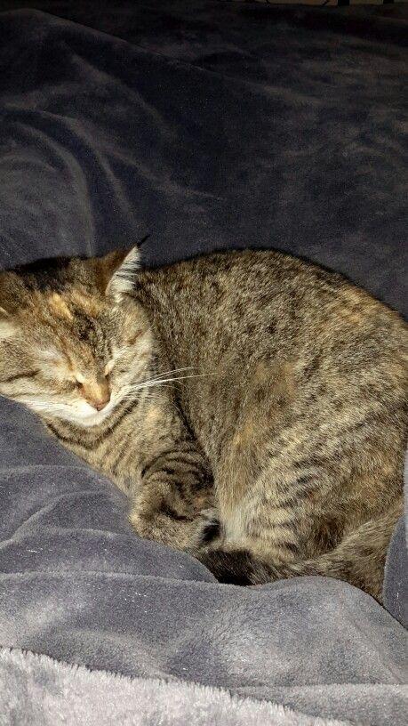 Sleepy Mary girl