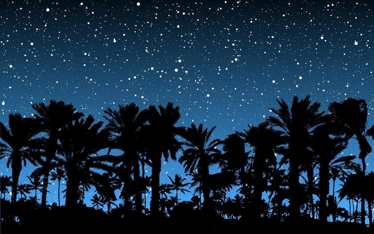 Palm Silhouette.