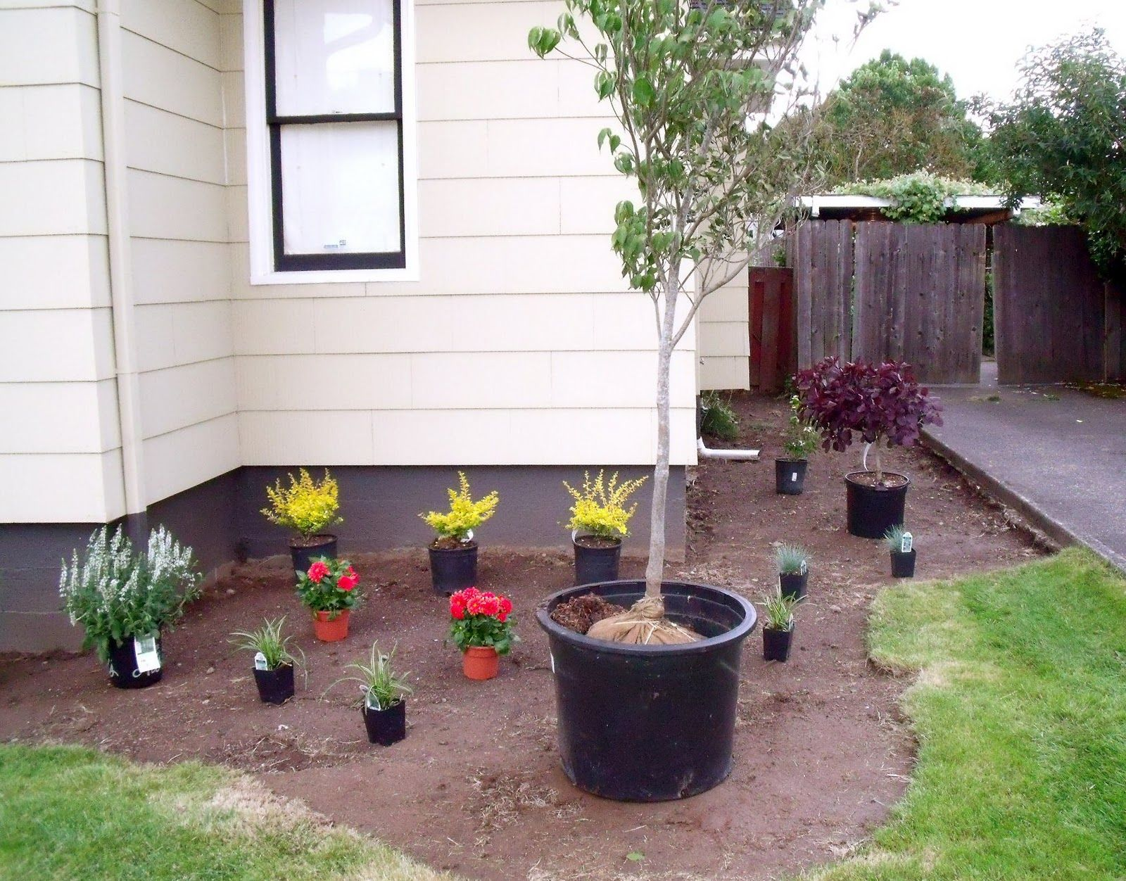 Simple And Low Maintenance Front And Side Yard Landscaping House ...